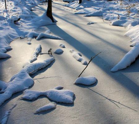 December stream, China, Maine by David Preston