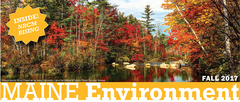 Maine Environment newsletter