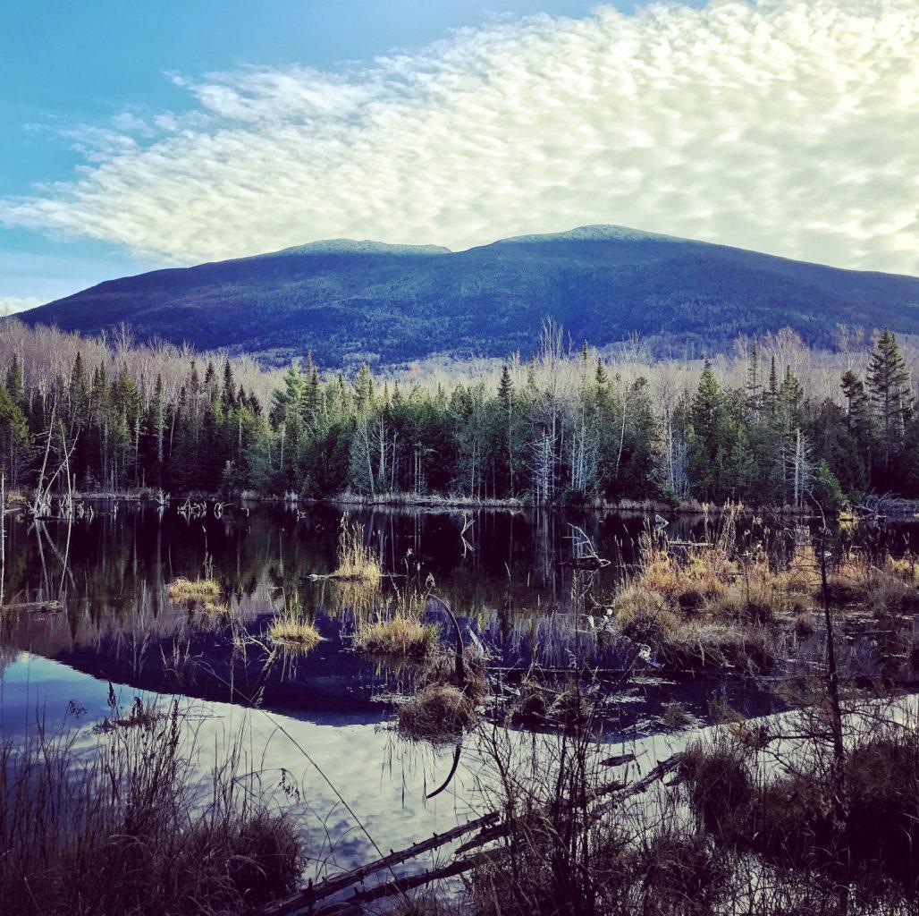 My Maine This Week: Matthew Greenleaf