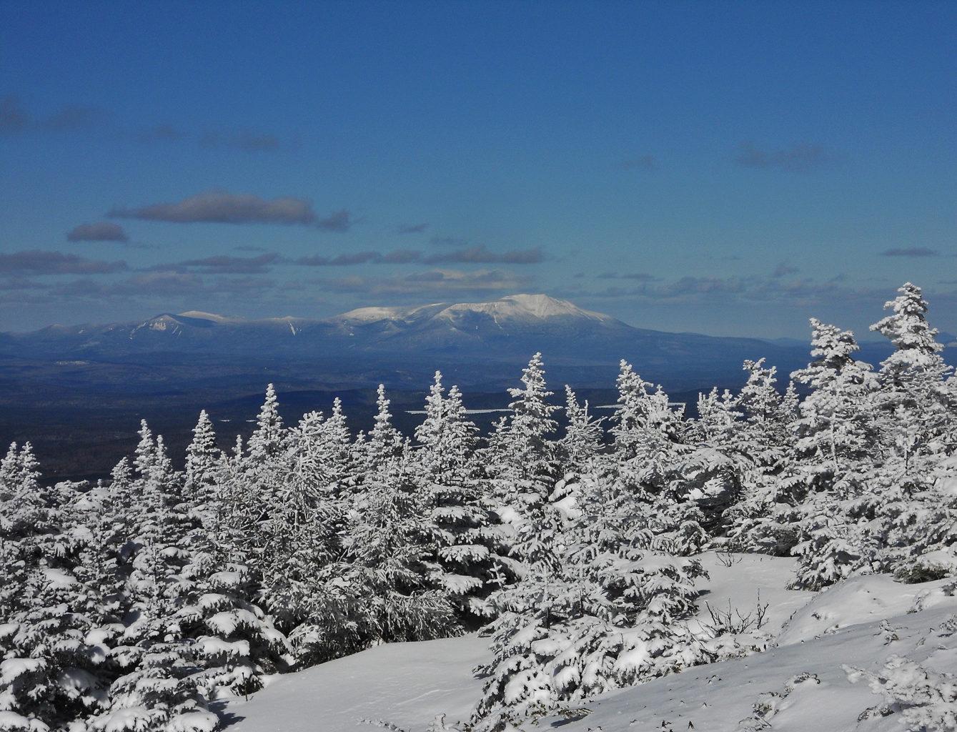 My Maine This Week: Wendy Weiger