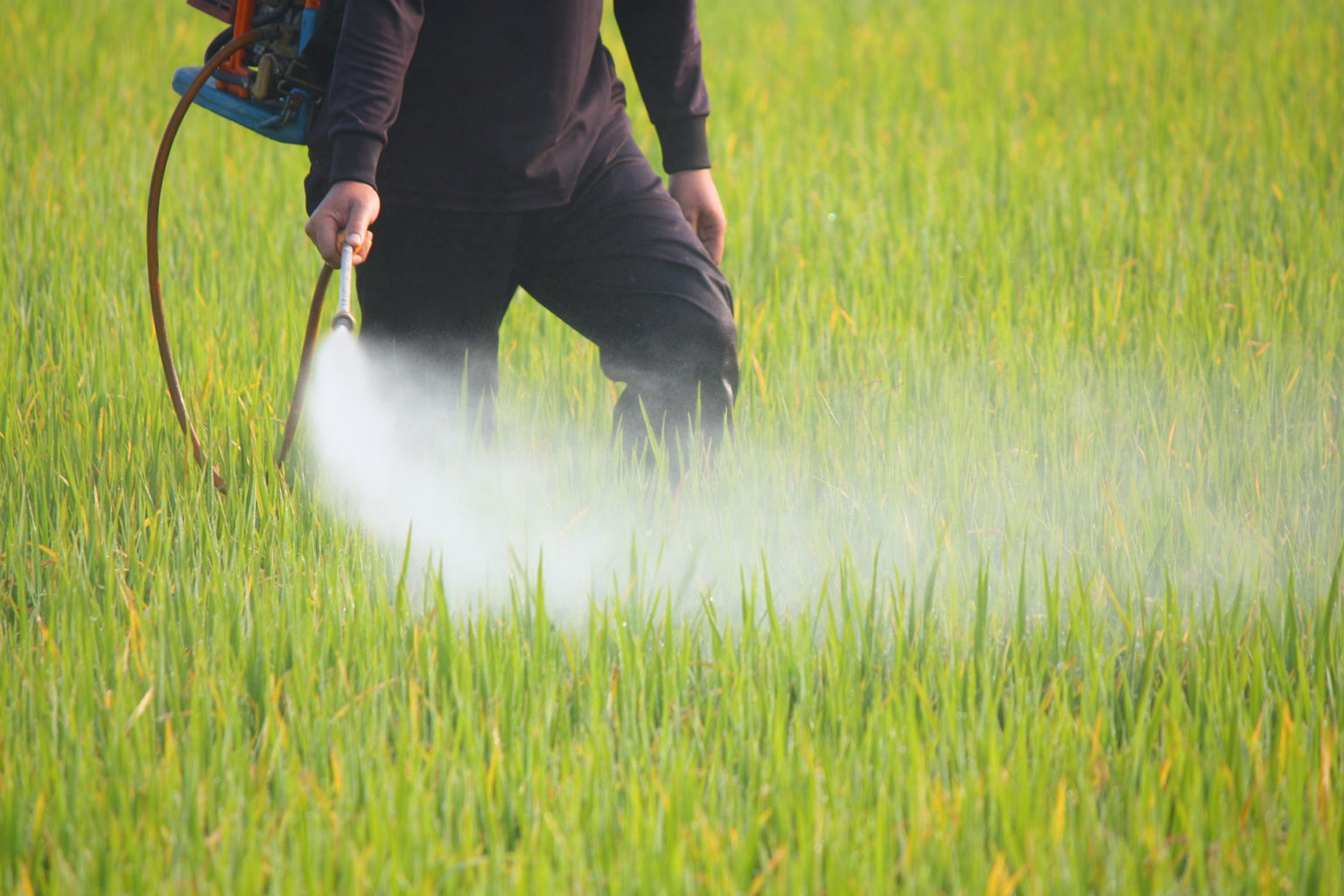 Portland, Pesticides, and the Power of the People