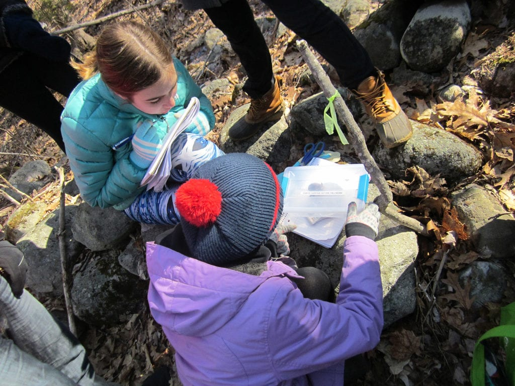 Two students weighing a mouse that we marked and released.