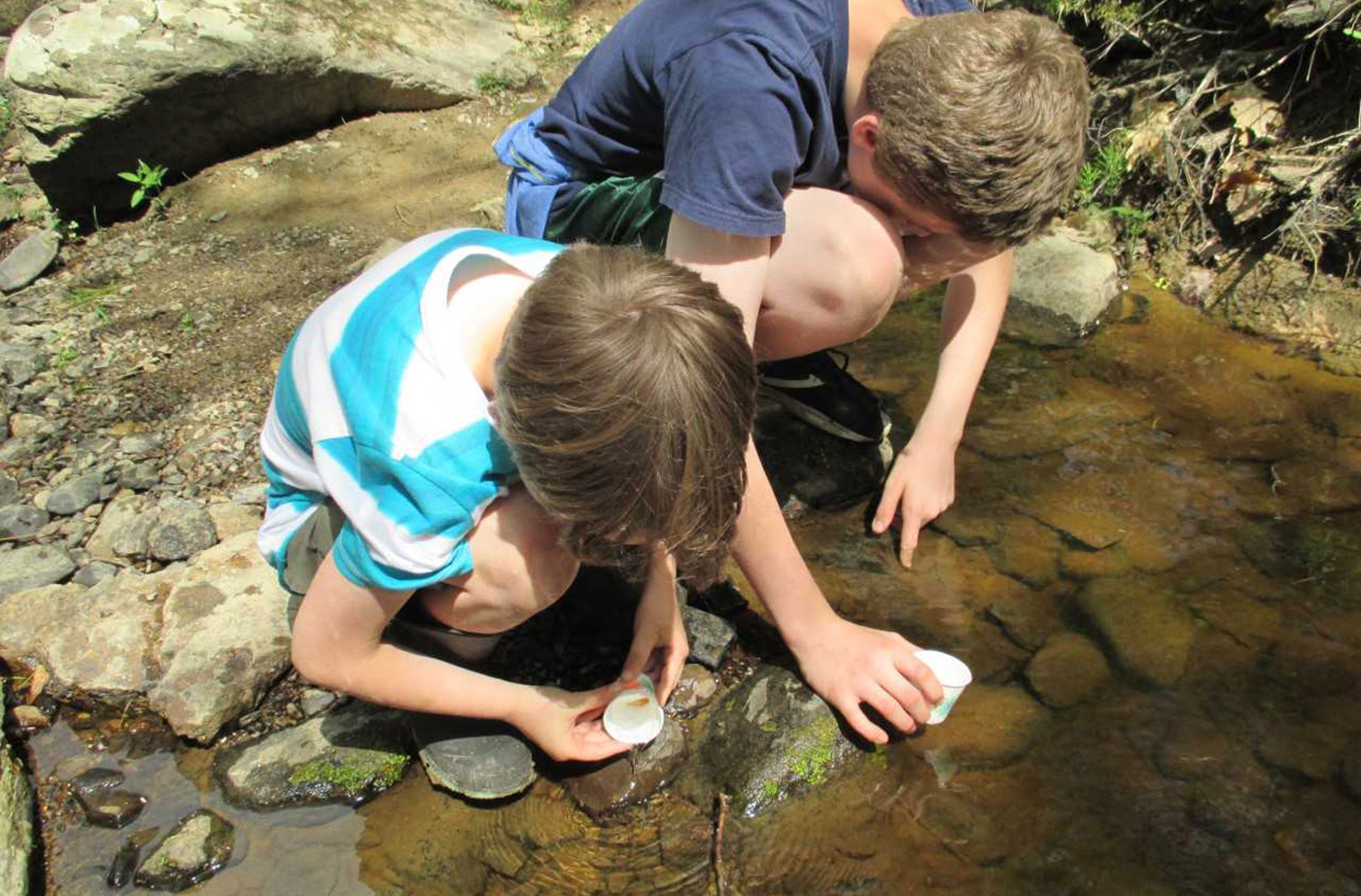 Lincolnville Students Assess Local Watershed