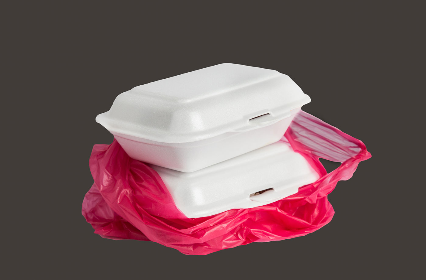 The Natural Resources Council of Maine Supports Bag and Polystyrene Bans