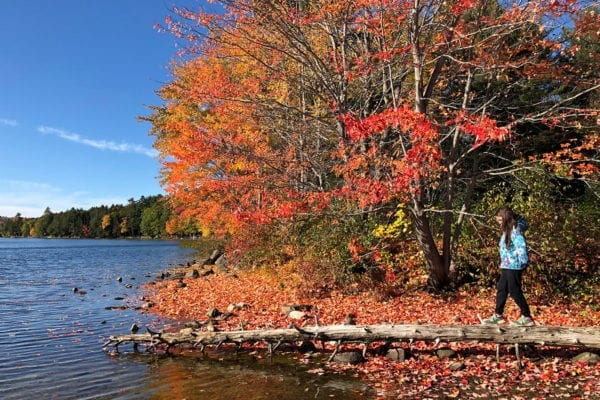 Donate to NRCM to protect the nature of Maine