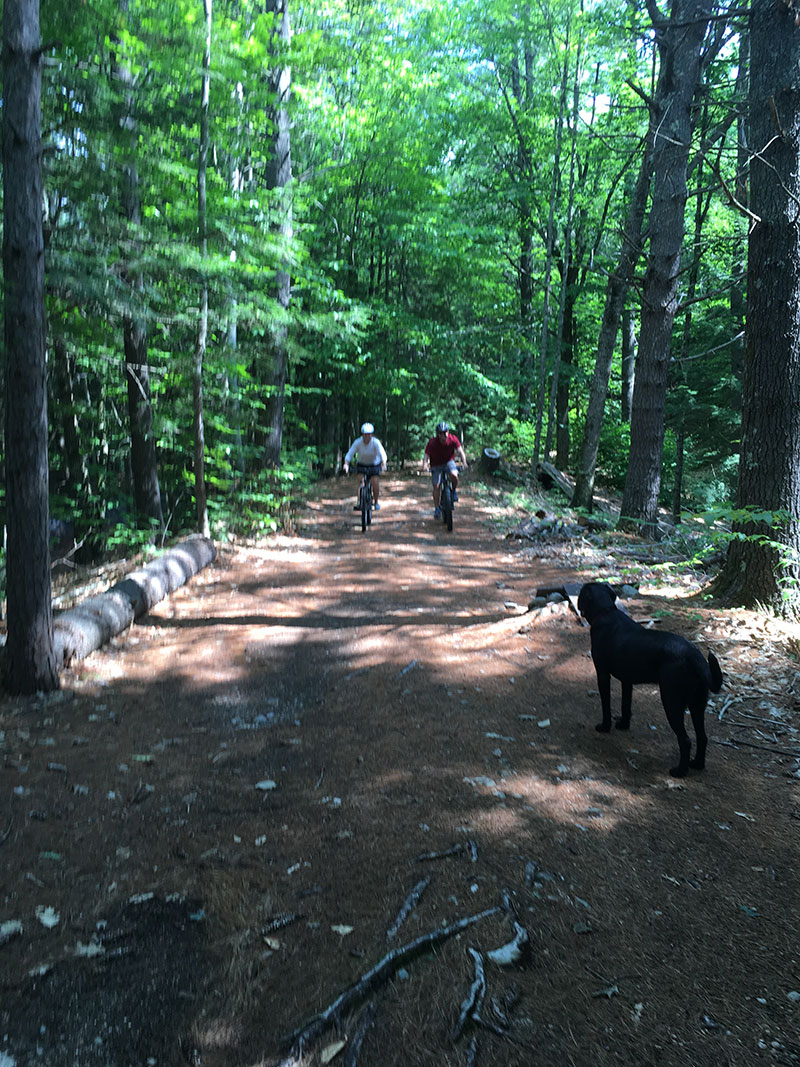 One of the trails at Back Country Excursions