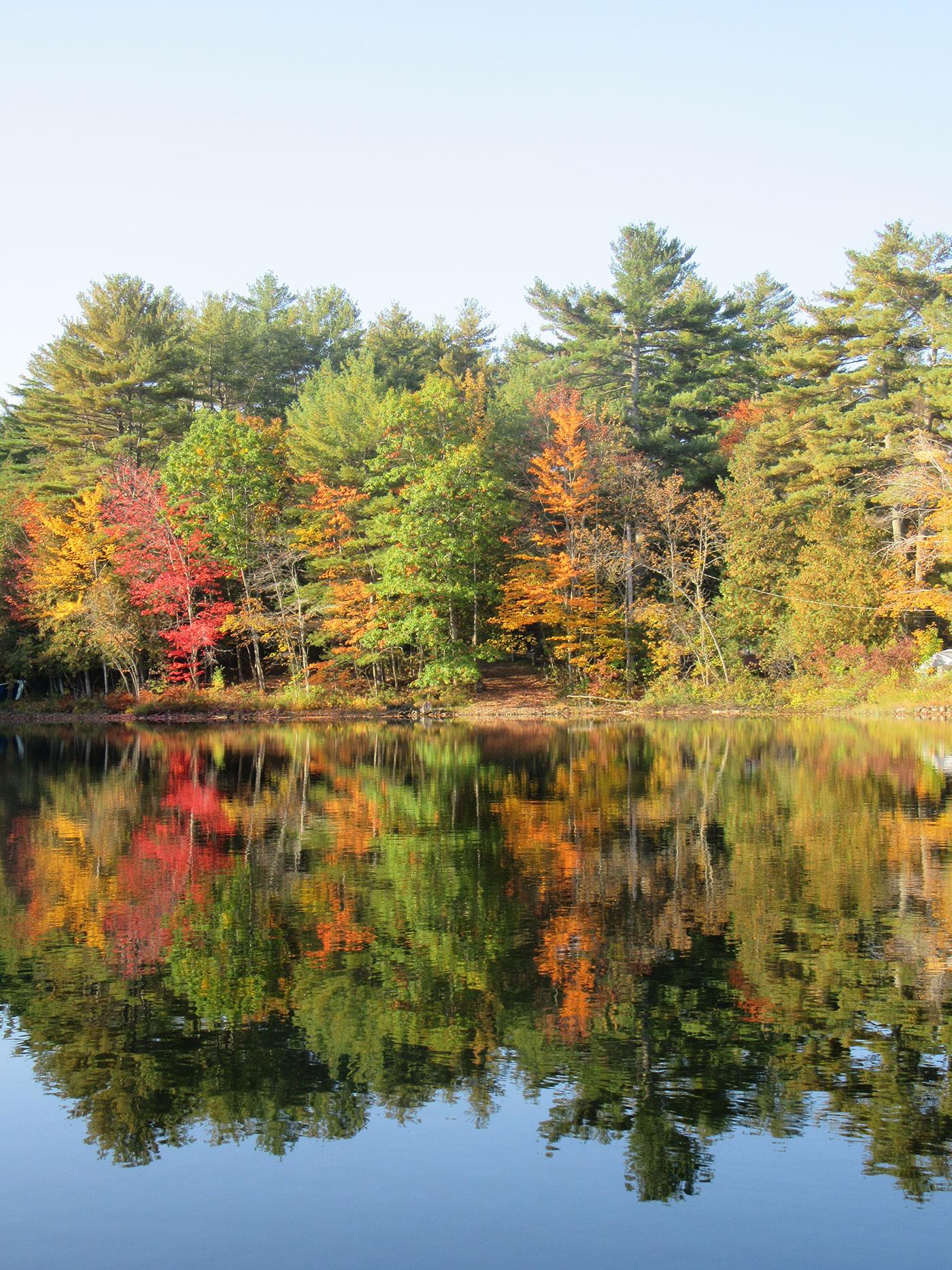 My Maine This Week - Linda Woods
