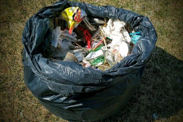 trash along Back Cove