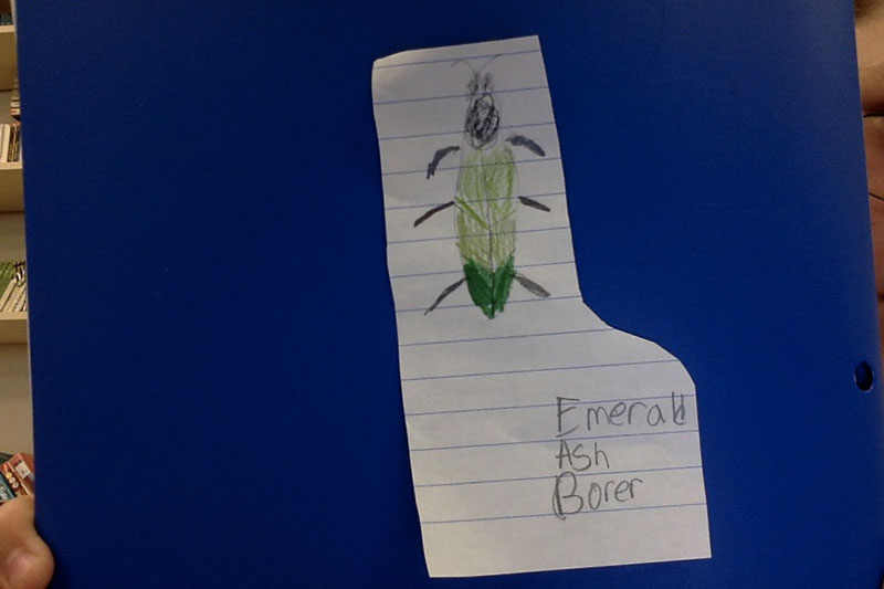 Strong elementary student drawing