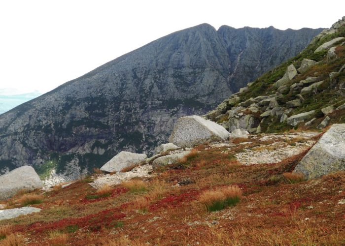 Katahdin's Saddle view