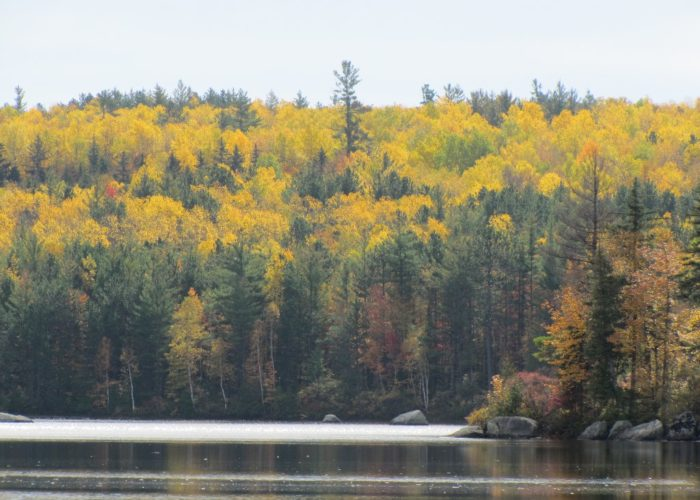 Lake George Park