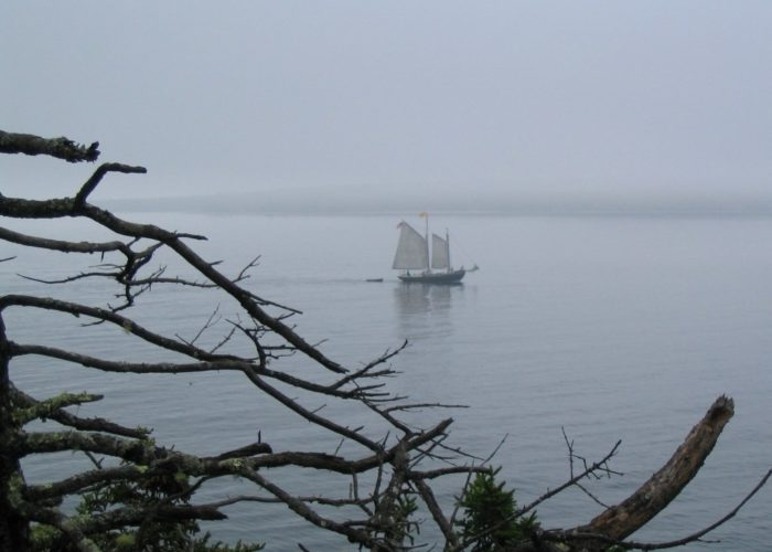 Bass Harbor sailing