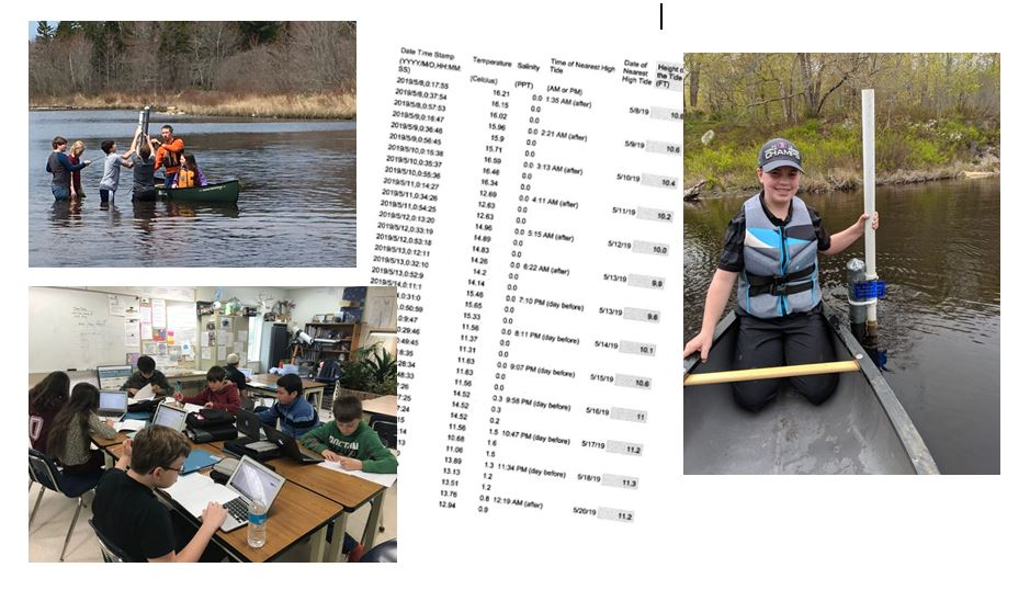 St-George-School-alewives-project