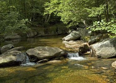 bear-river
