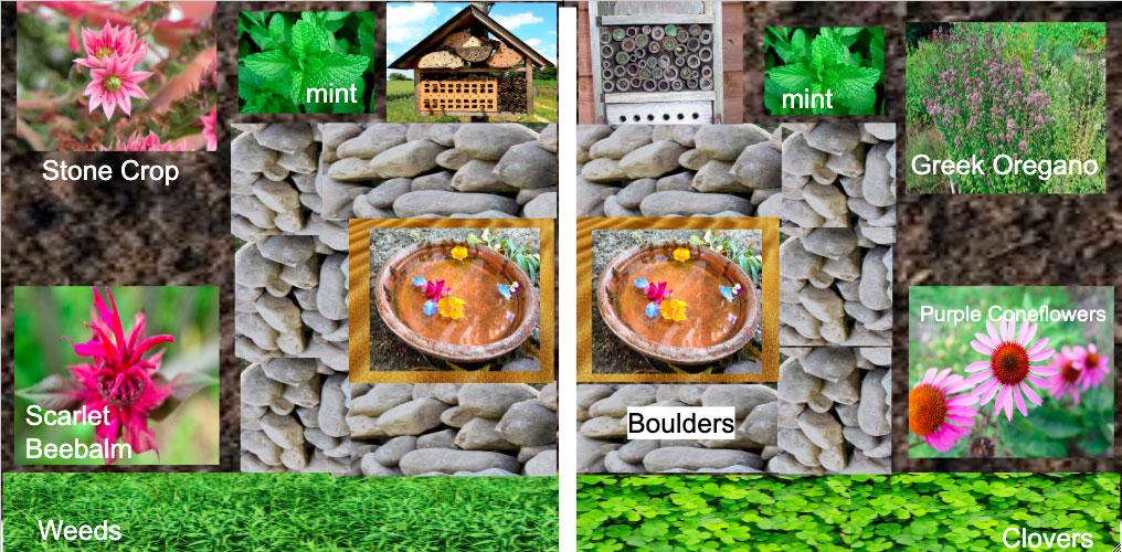 bee garden proposal