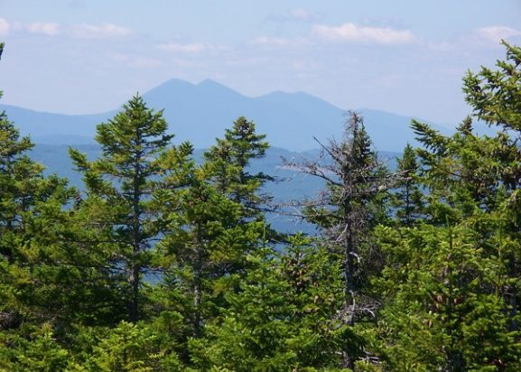 Bigelows from Pleasant Pond Mountain