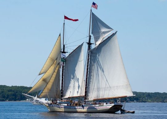 Maine windjammer in Rockland