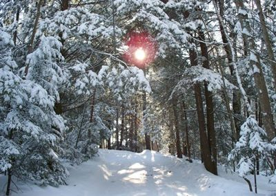 winter in Oakland, Maine