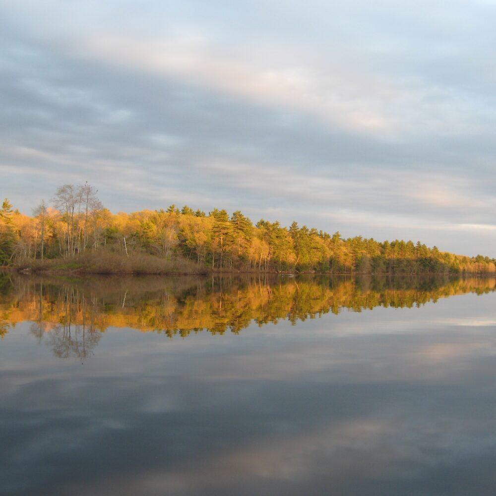 Dyer Long Pond