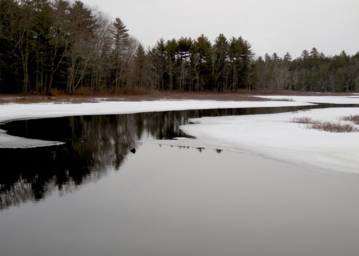 Dyer Long Pond