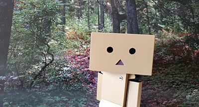 Boxy McBoxface enjoying a hike