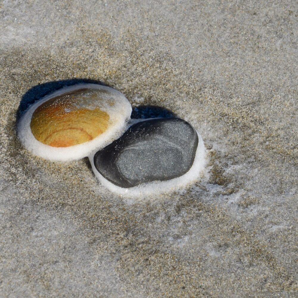 Willard Beach rocks