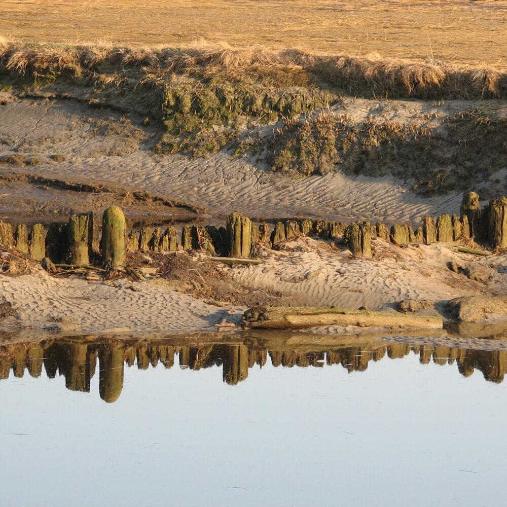 low tide Scarborough Marsh