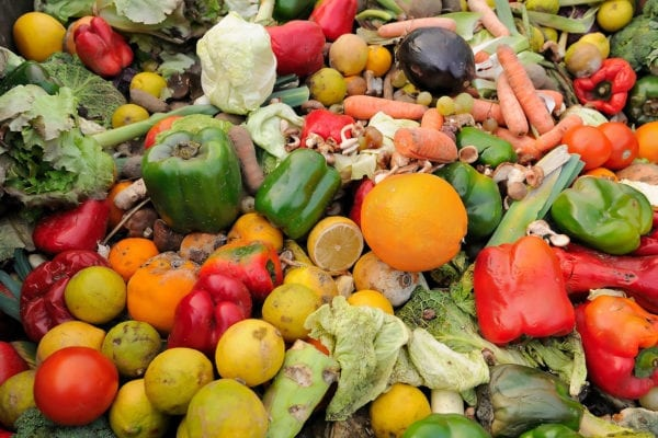 food waste in maine