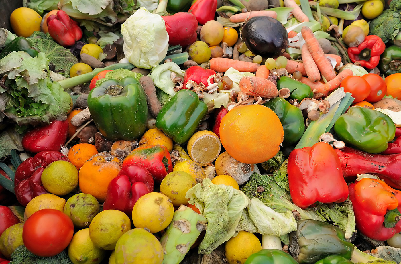 Food Waste in Maine and How to Reduce It | NRCM