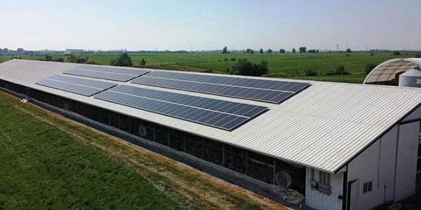 small medium business solar
