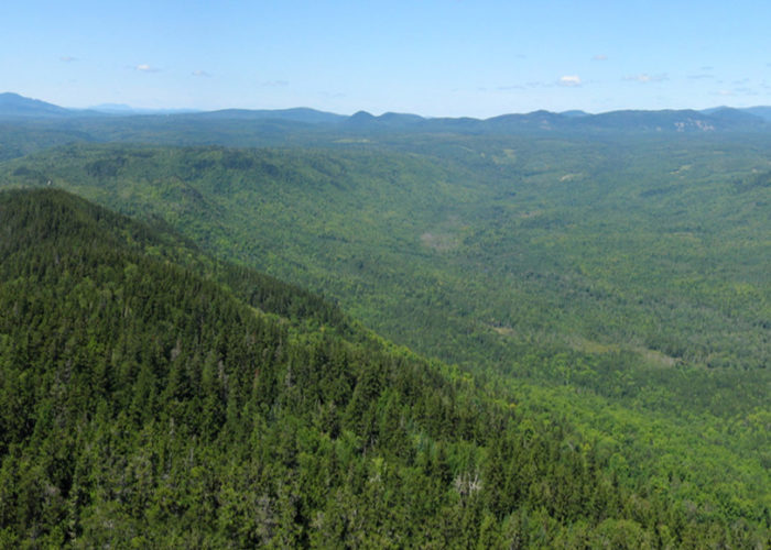 Borestone Mountain