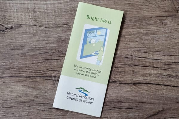 Person caulking window on Bright Ideas pamphlet