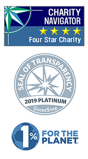 Charity ratings 2019