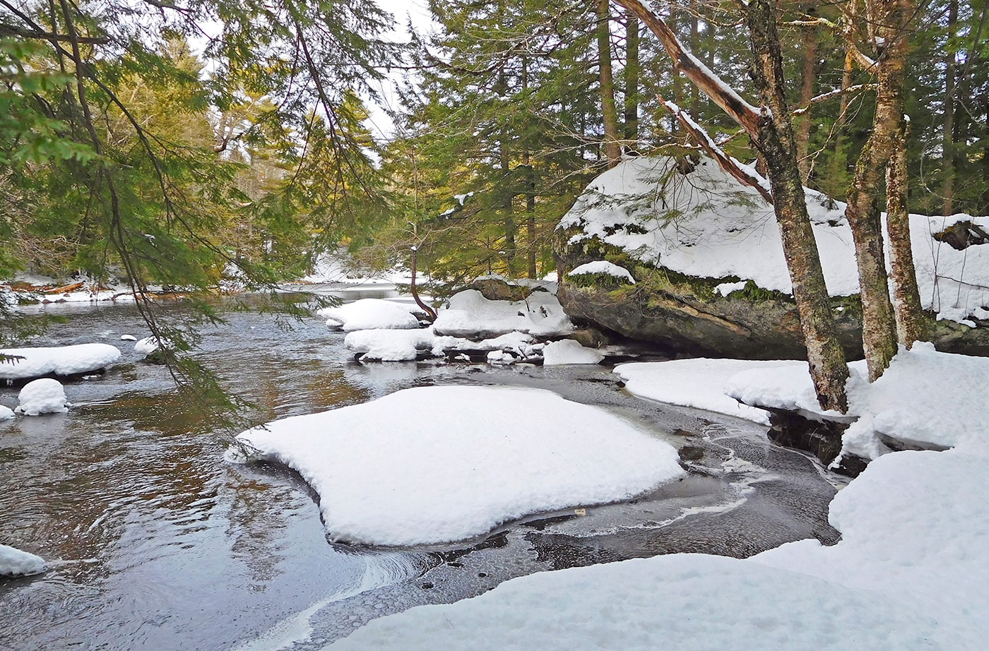 Cathance River Preserve in winter
