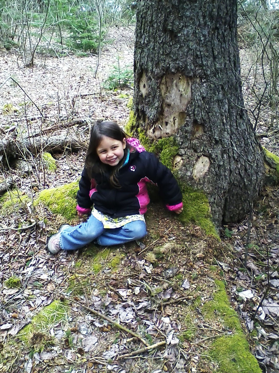 girl sitting in front of tree in Maine forest