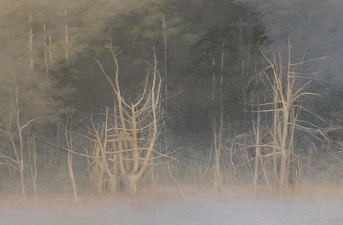 Shrouded Mist