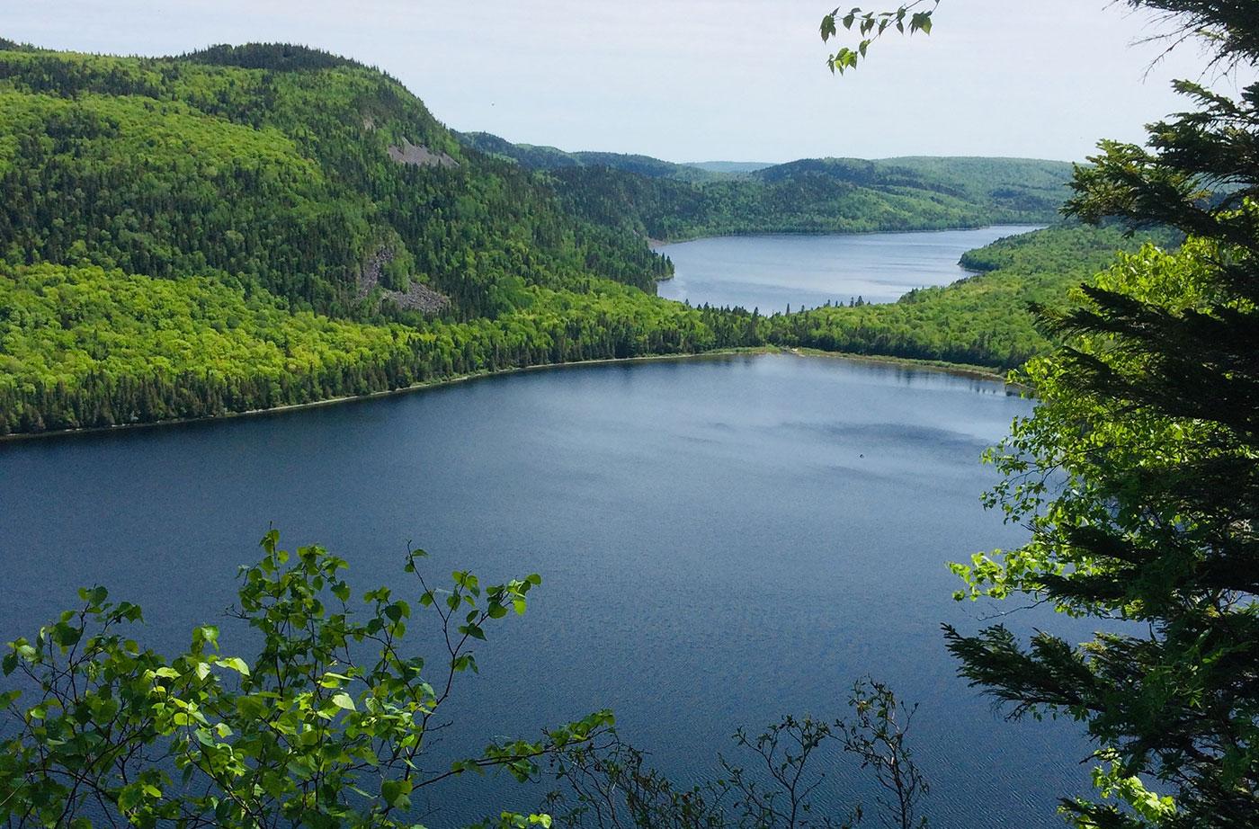 Deboullie Ecological Reserve