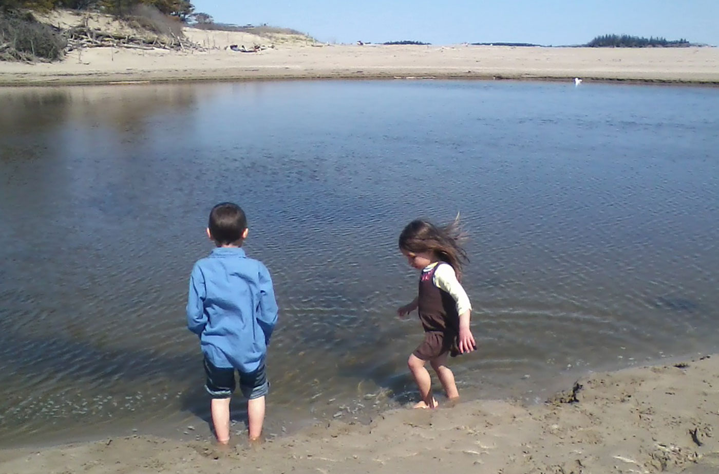 children playing in water on Maine coastline