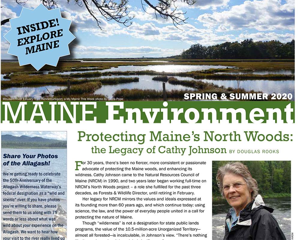 Spring 2020 Maine Environment banner