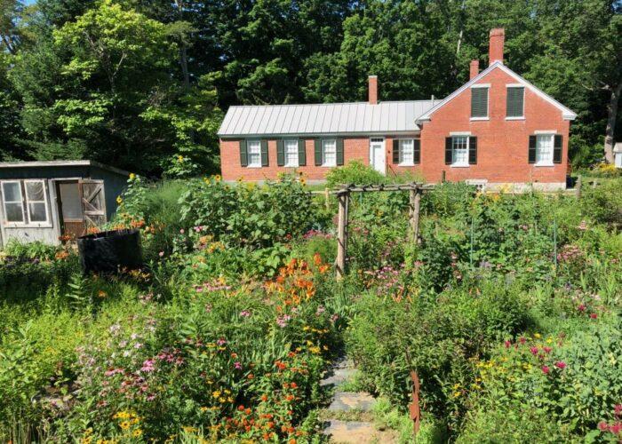 Patricia's Garden