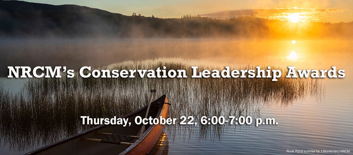 Conservation Leadership Awards registration