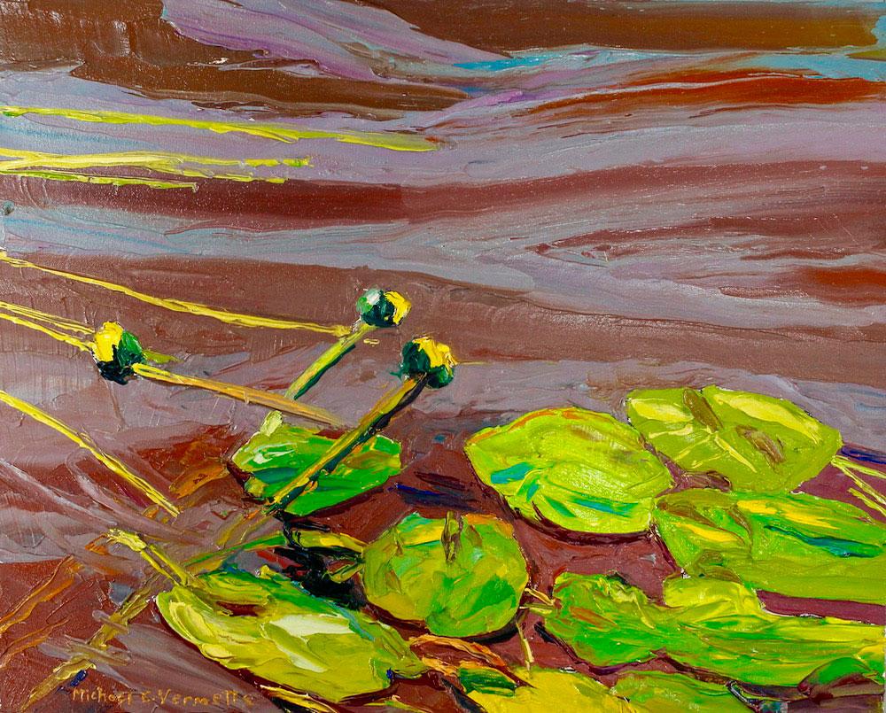 Water lilies of Chamberlain Lake
