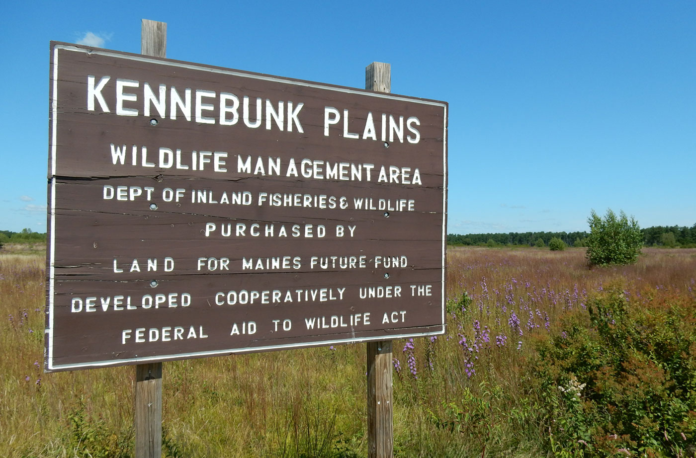 Kennebunk Plains