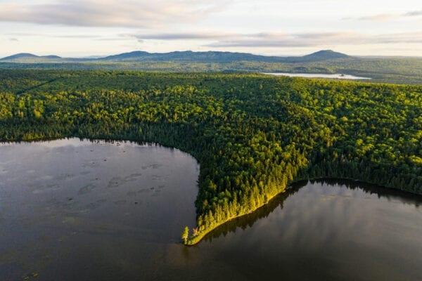 Pickett Mountain Pond