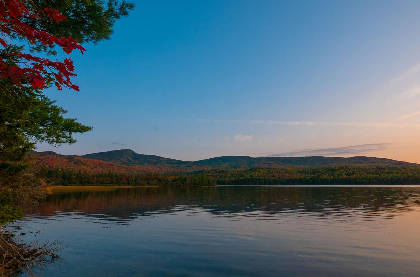 Rock Pond by Sam Steele
