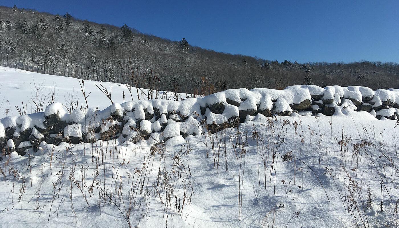 snow in field in Hope