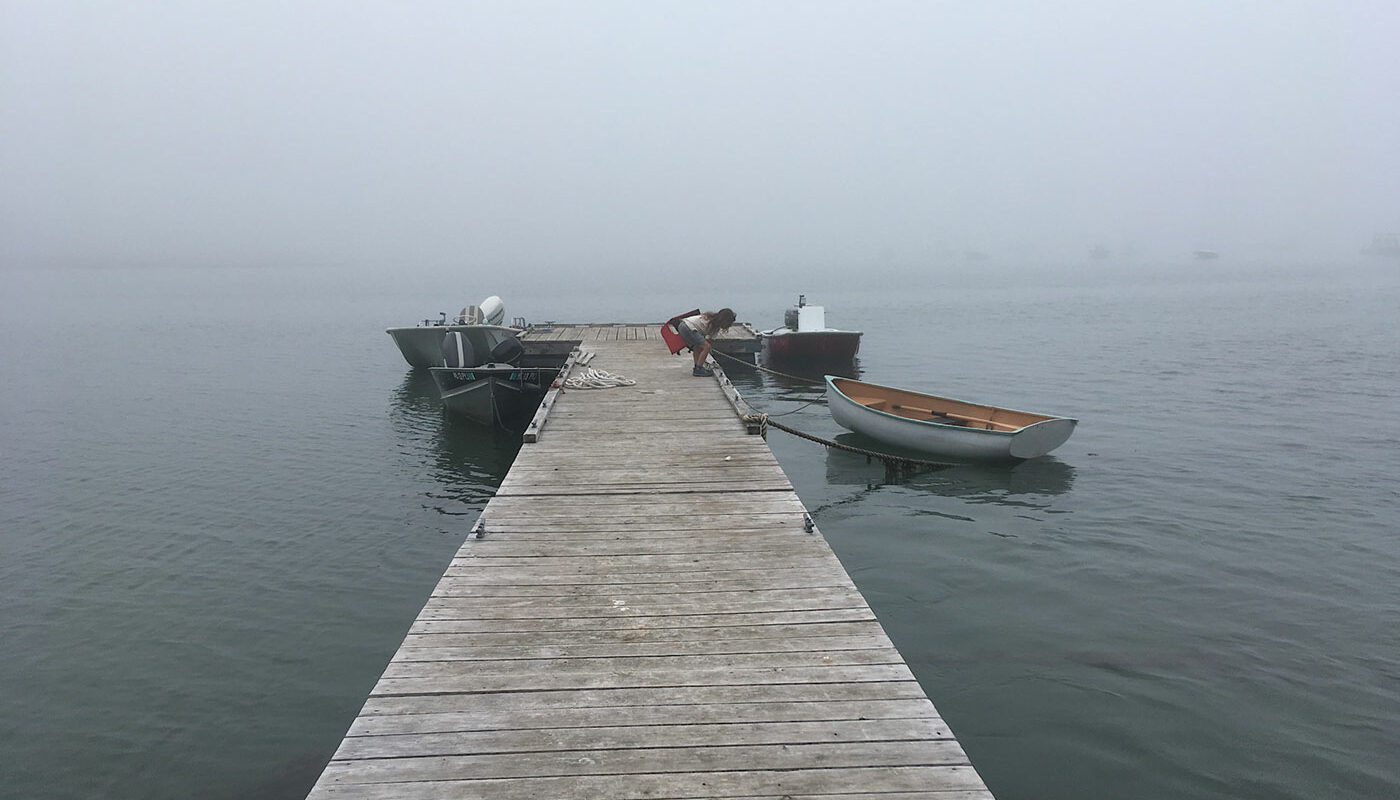 foggy view from boat dock