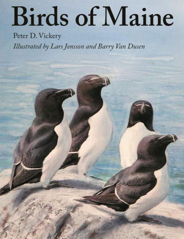 Birds of Maine book cover