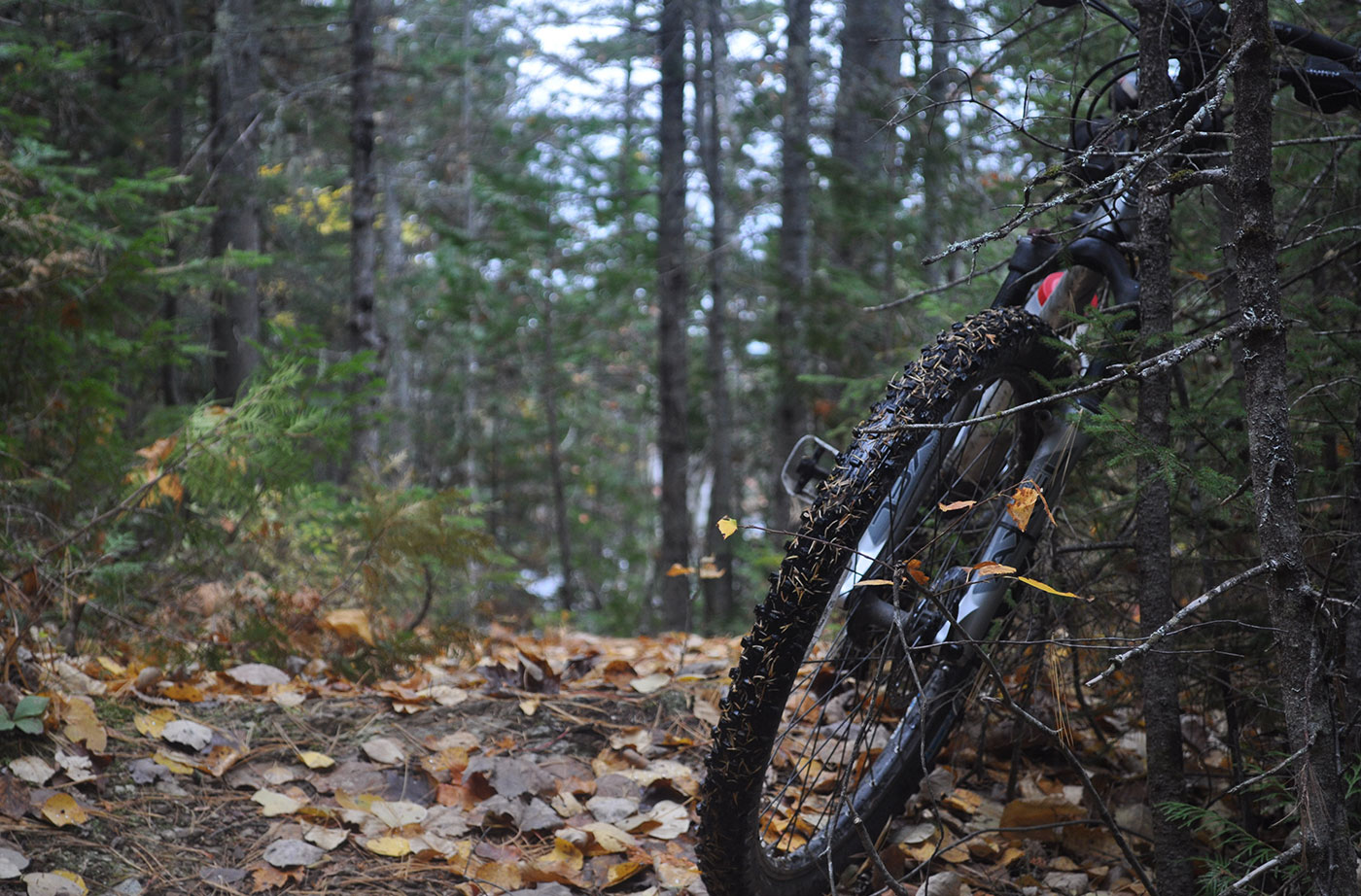 mountain bike on wooded path