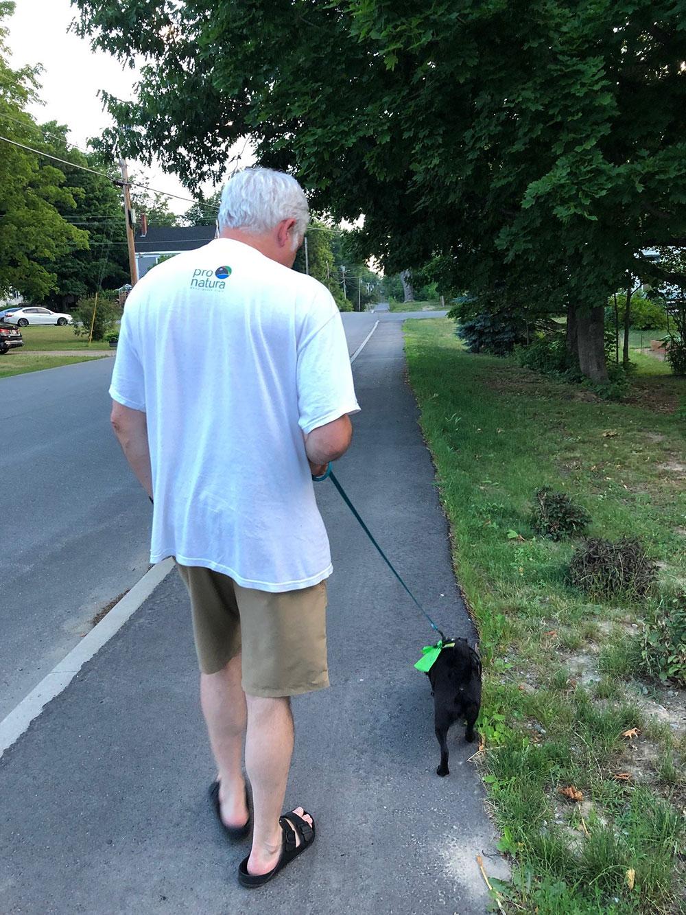 Walking dog on street